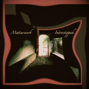 IntrosteppahSet by Matiureverb