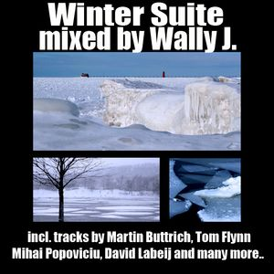 Winter Suite 2011 mixed by Wally J.