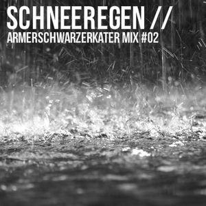 Schneeregen // ArmerSchwarzerKater Mix #02