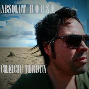 ABSOLUT HOUSE by CREICIU VERDUN # 01