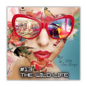 The Wild Life #13