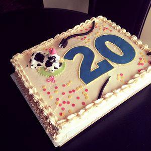 Mix 20 ans Charlène 28 nov. 2015 (incomplet)
