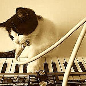 "DEEJAY PHAROAH "" boogie funk vocoder heavy bass "" vinyl mix ***** LIVE *****"