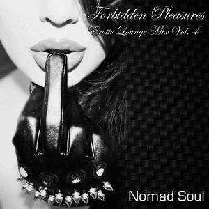 Forbidden Pleasures: Erotic Lounge Mix Vol. 4