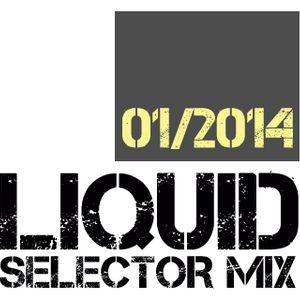 Dj Liquid - SELECTOR MIX - 01/2014