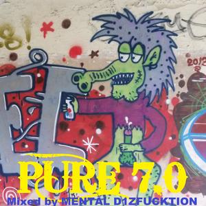 MENTAL D1ZFUCKTION - PURE 7.0 (HEIDELBERG³)