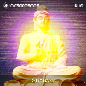 Suduaya - Microcosmos Chillout & Ambient Podcast 040