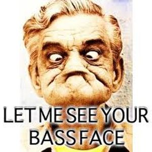 DJ Lou-B House & Bass in ya face mix