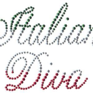 electrocuted diva's italian remix