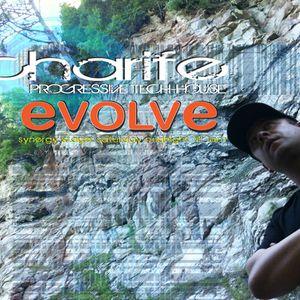 unsung songs vol 2 (Evolve Festival XIII) - charife