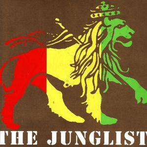 junglemusic 4the 90s