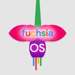 Fushsia Nuevo Sistema Operativo De Google , Imágenes Del Nuevo Nexus De Htc, Adios Skype, Bug En Lin