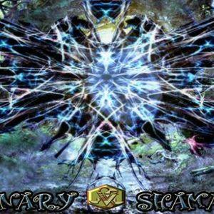 Algiz - Visionary Shamanics