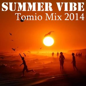 Summer Vibe Tomio Mix 2014