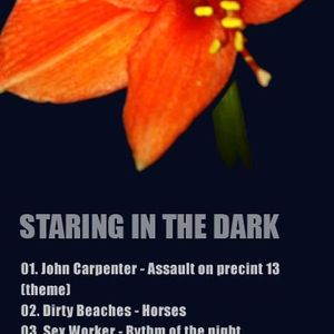 Starring In the Dark (February 2011)