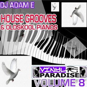 VP Vol. 8 - House 'n' Oldskool Piano Mix