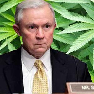 Marijuana Could Be Trump's Vice...