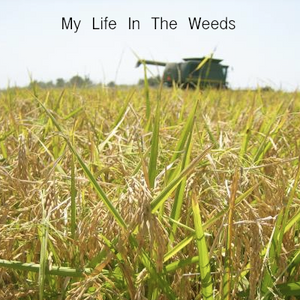 My Life In The Weeds