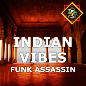 Funk Assassin - Indian Vibes
