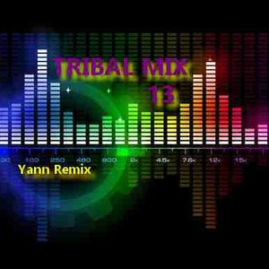 Tribal Mix #13