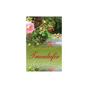 Cartea e o viață - Sezonul 12, Ep.01 - Amy Carmichael - Trandafir din măceș