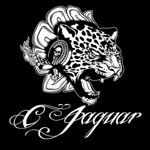C-Jaguar in the Beats ♪ ♫ ♩ ♬ ♭ ♮ ♯Mauro Picotto Mix