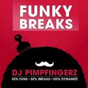 DJ PIMPFINGERZ - FUNKY & HIP-HOP BREAKS live at Puberaj (NS)