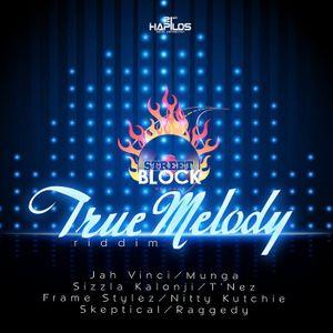 """Mr. Bruckshut - """"True Melody Riddim (2014) Mix"""""""