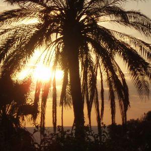 Mickey Fentross - Settin Sunbaking Sunset