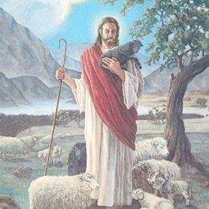 Bài giảng Thánh lễ Chúa Nhật XXIV Thường Niên C