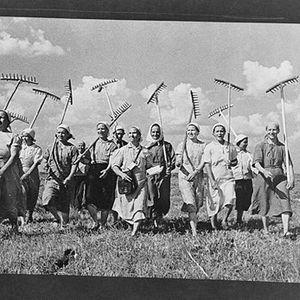 מפברואר לאוקטובר • 1917