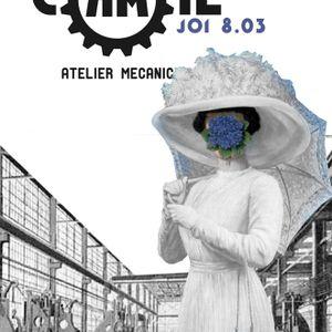 KarmaCAMILeon live @ Atelier Mecanic - 8 martie 2012