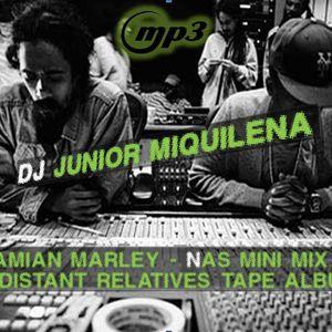 Dj Junior Miquilena - Damian Marley & Nas Mini Mix 2011 (Distant Relatives Tape)