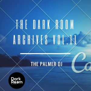 The Dark Room Archives Vol.11 - The Palmer Dj