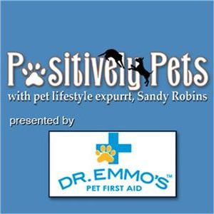 First Aid Training for your pets and how to toast your Fido