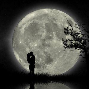 Nightlove