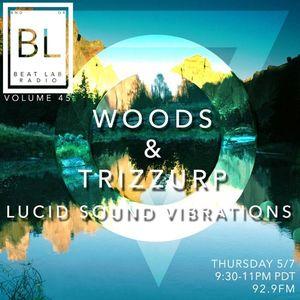 Lucid Sound Vibrations  Beat Lab 45