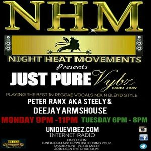 Peter Ranx The Pure Vybz Show (27_06_2017)