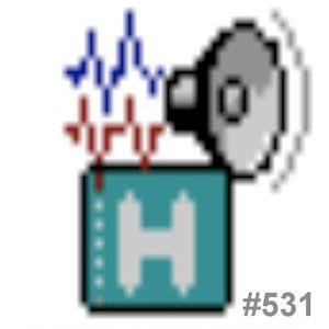 L'HORA HAC 531 (1.2.13)