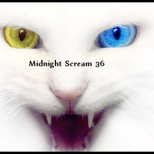 Midnight Scream 36