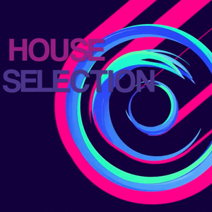 HOUSE SELECTION MIX - ROGER DJ (June 2015)