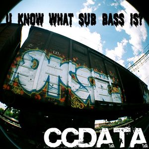 U Know what SUB-BASS is? (Minimix by CCDATA)