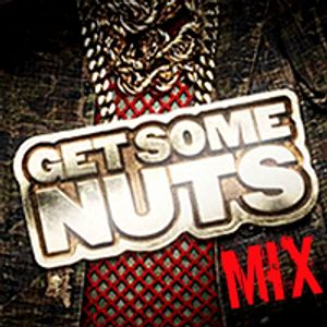 GET_SOME_NUTS_MIX_2010