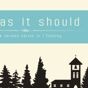Talk 6 - The church as it should be - honour - 1 Timothy 5:1-6:2