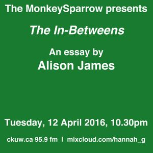 The In-Betweens- an essay by Alison James- MonkeySparrow 41