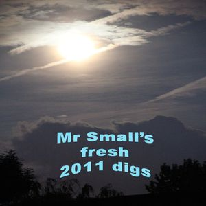 Mr Small's fresh 2011 digs