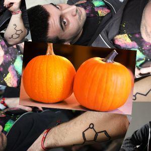 Dj 100le - TheBunkerTribe - Set - Two Pumpkins