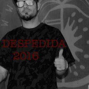 DESPEDIDA al año  2016 NSEL