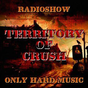 Vinyl Raider Guest Mix - Territory of Crush @ Tanz.fm № 80