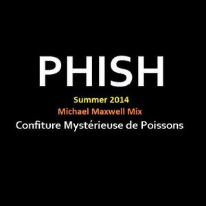 Phish Summer 2014